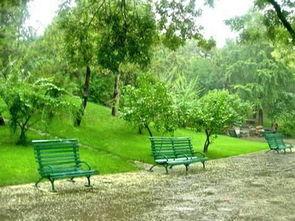 ...不在是雨,再咏落花的倩影依稀飘在了雨中..... -又是落花雨无心