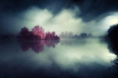 ...就带你走进这个如梦似幻的红外世界…-是另类还是艺术 如梦似幻的...