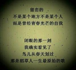 名言   伤感的句子:有些路注定要一个人走   十七,是不是不喜欢解释...