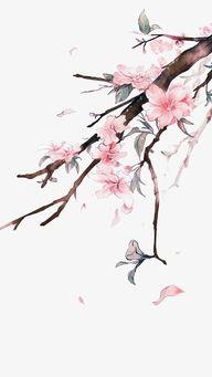手绘桃花素材
