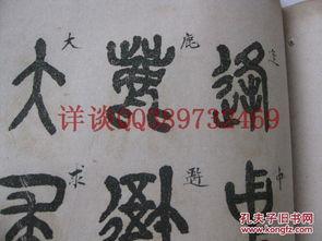 王震艺术签名