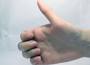 男人断掌   手相图解   ,所以就有着很多关于断掌手相的说法,而我们...