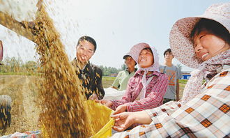 ...手,农民不禁喜上眉梢.-产粮大县调查 谁来种地 怎么种地