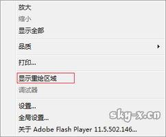Chrome安装FlashPlayer Debug