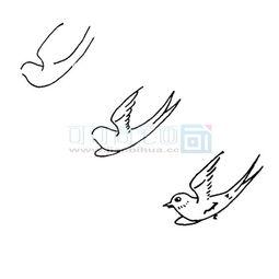小燕子的分解画法步骤