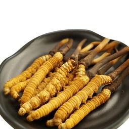 冬虫夏草-如今宜昌虫草价格颇高乙肝病吃它有用吗