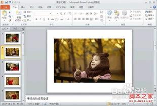 ppt添加背景图片 office ppt背景图片如何添加