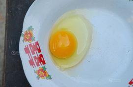 手养的鸡生的第一个蛋,都鸡开始生蛋了,这样借来的钱也可以早点给...