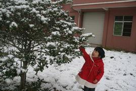 车上积了这么厚的雪,帮妈妈铲雪,要不妈妈可上不了班了.   *下午回...