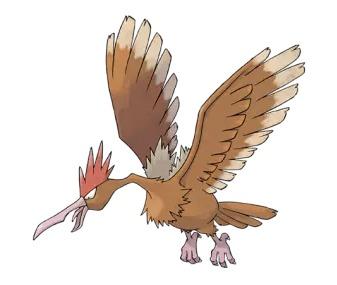 刺世龙雀-外貌特征   大嘴雀是大型的棕色猛禽.大嘴雀头部有红色的冠.嘴大而...