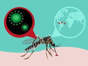 ...测力度防止寨卡病毒在国内蔓延
