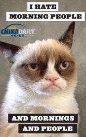 艹猫0补丁krkr2-据外国媒体10月16日报道,坏脾气猫来自美国亚利桑那州,他的主人称...