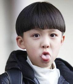 洪世贤 凌潇肃 朱佳煜