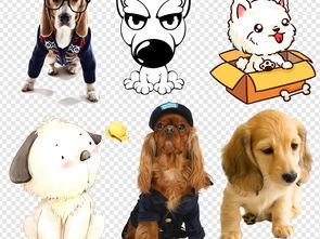 卡通可爱小狗狗狗素材图片下载png素材 动物
