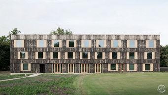 圈子 剑桥大学校园内增添了木制走廊 6a Architects