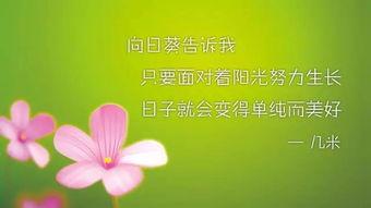 唯美励志的句子 唯美的句子说说心情