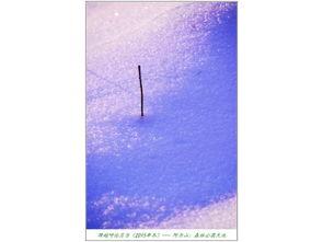长镜头聚焦,发现,雪的晶莹并非只是意向的形容,而是如此真实.   ...