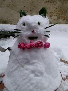 好看的雪人图片 创意的堆雪人图片大全 25