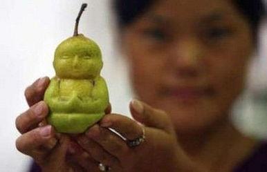 超市惊现人参娃娃梨-日本西瓜奇形怪状 奇葩蔬果的世界很难懂