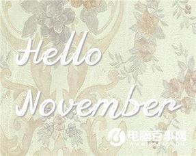 癸巳年农历十一月谁的桃花运旺