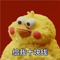 ...信讨红包表情包小黄鸭下载 小黄鸭表情包无水印图片大全 过年了教你...
