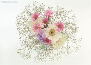 漂亮束花图片