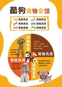 宠物宣传单海报设计模板下载