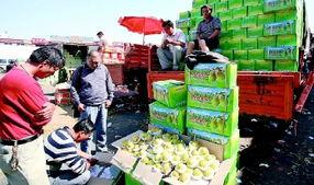 乌鲁木齐批发市场 库尔勒香梨价格下降
